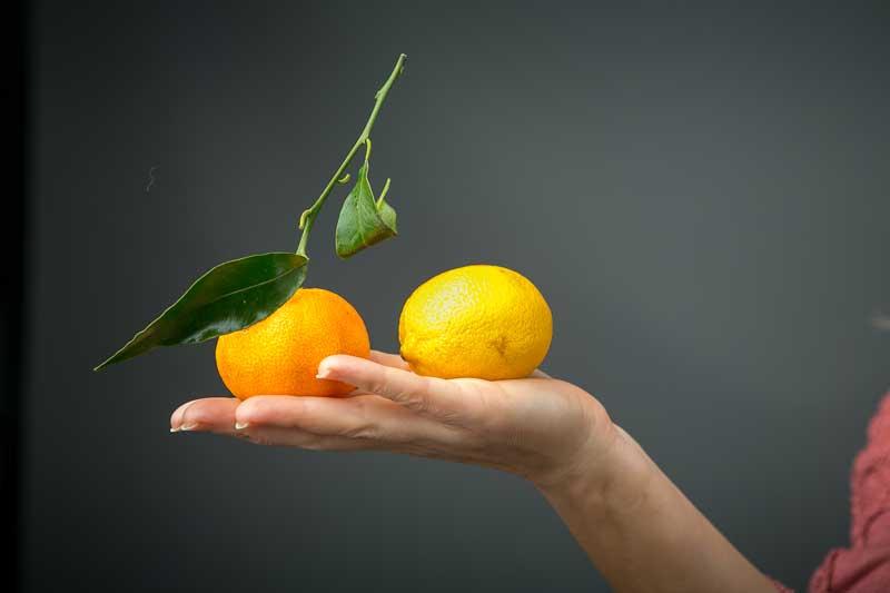 orange and lemon image