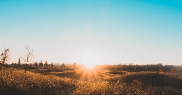 sunrise vitamin d3 supplements