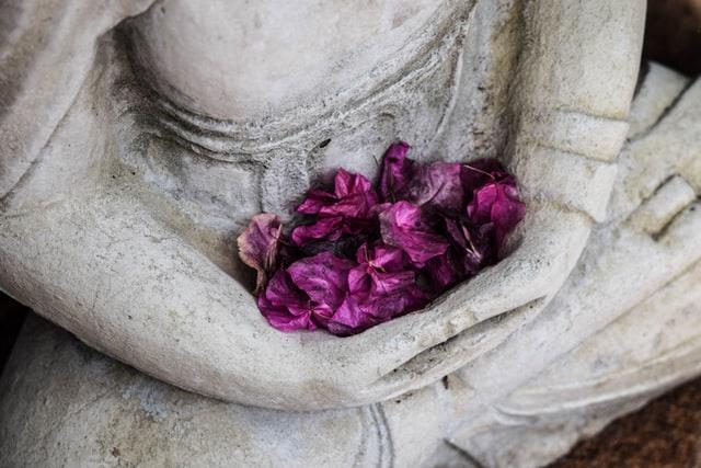 meditation session vibrant lifestyle